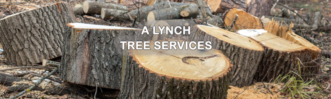 ALynchTreeServices