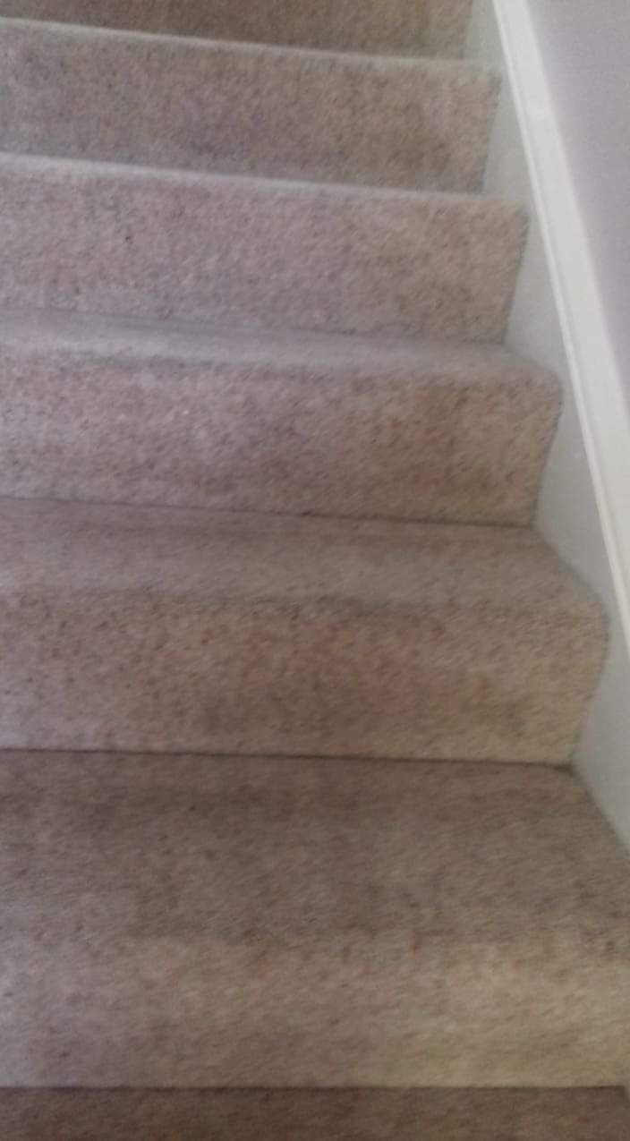 Carpet Cleaning Galway