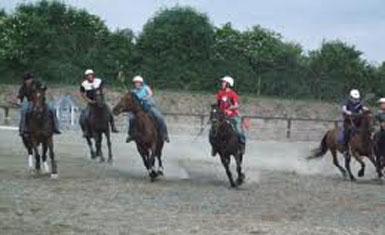 Roscrea Equestrian Centre Ireland