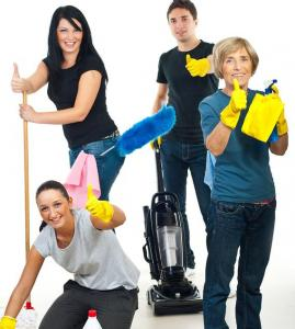 bigstock-Successful-Teamwork-Of-Cleanin-10703135