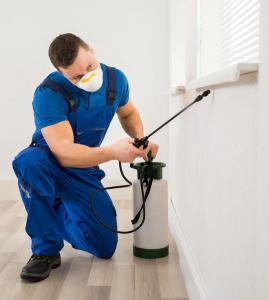 bigstock-Worker-Spraying-Pesticide-On-W-114427622